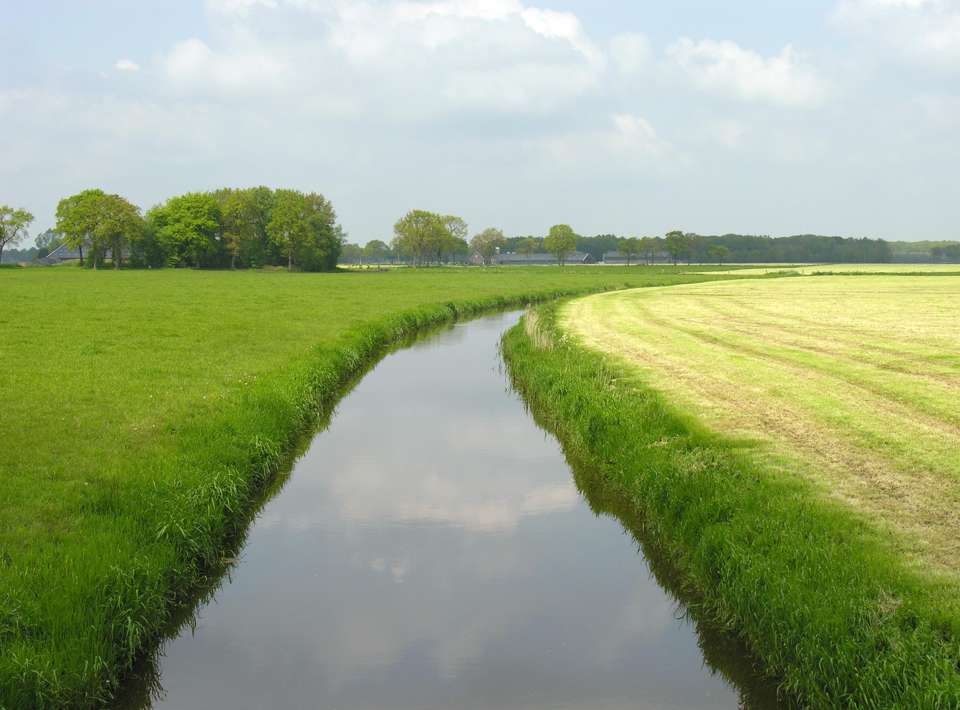 Foto tijdens solextour Breda van een weiland